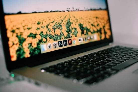 Apple Macbook With Dock Icons Showing With A Desktop Background Of A Field Full Of Yellow Flowers